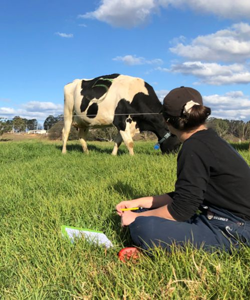 Rare opportunity for aspiring dairy researchers
